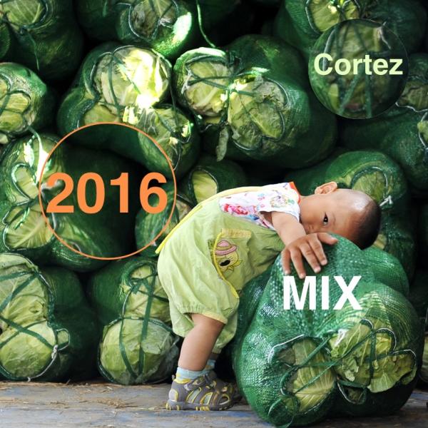 cortez_2016_mix